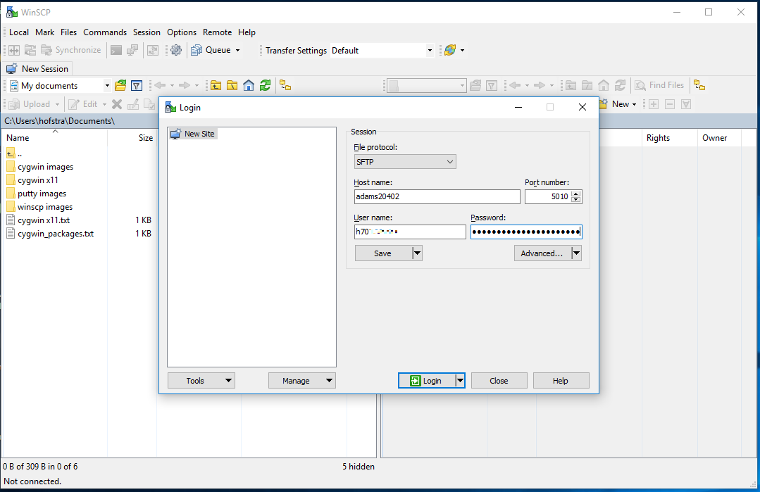 Remote file transfer on Windows using WinSCP   Computer Science